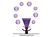Information Architecture infographic